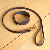 "3/4"" Lurcher Collar & Lead"