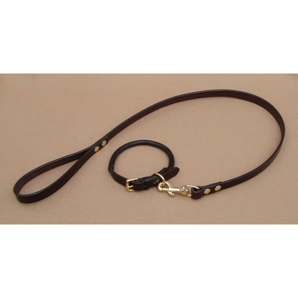 Rolled Leather Dog Collar Terrier
