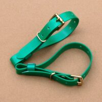 "3/4"" Green Biothane Beagle Couple Collars"